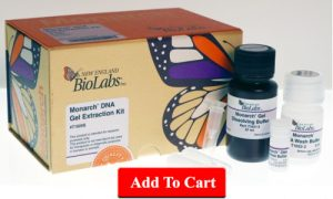 Monarch DNA Gel Extraction Kit